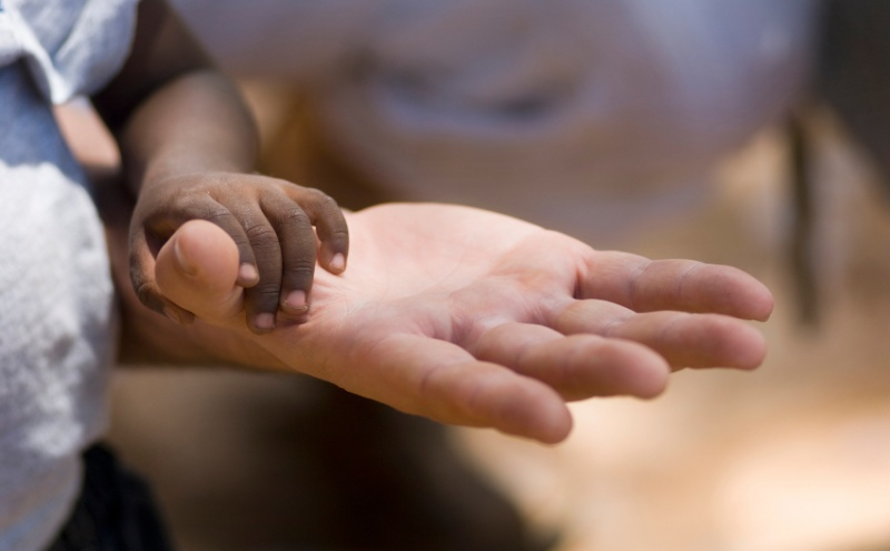 A maioria de candidaturas para adopção vem de Portugal